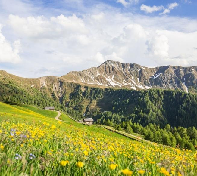 Hiking experiences - enjoying nature